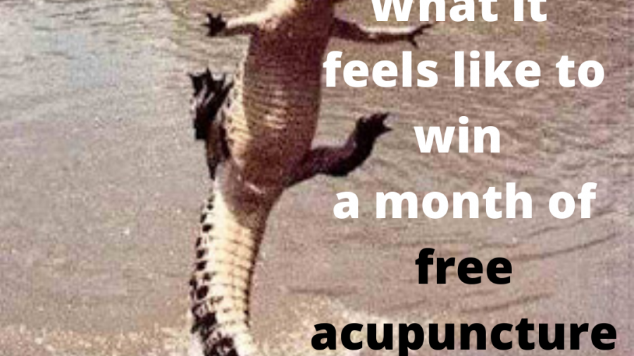 A month of free acupuncture_ (1)